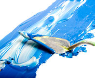 Acryllack getrennt Stockbild