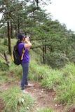 Acte de fille dans la forêt de pin photos libres de droits