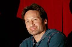 Acteur David Duchovny Stock Foto