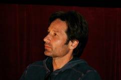 Acteur David Duchovny Royalty-vrije Stock Afbeeldingen