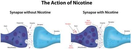 Actie van Nicotine Stock Afbeeldingen