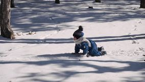 Actieve jongen die op alle fours in een de winter snow-covered park tussen lange bomen kruipen stock videobeelden