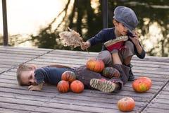 Actieve jongens die met pompoenen en appelen zitten Royalty-vrije Stock Fotografie