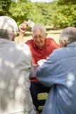 Actieve oudsten, groep oude vriendenspeelkaarten bij park Stock Foto