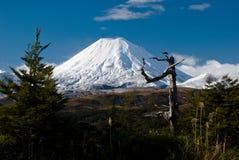 Actieve vulkaan onder sneeuwkop Stock Foto
