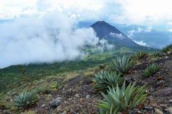 Actieve vulkaan Yzalco en wolken Stock Fotografie
