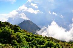 Actieve vulkaan Yzalco in wolken Stock Afbeeldingen