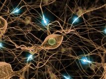 Actieve zenuwcellen Stock Fotografie