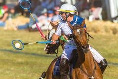 Action équestre de plan rapproché de jeu de Polocrosse photographie stock libre de droits