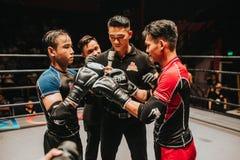 Action, Adult, Athlete, Battle Stock Image