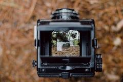 Action, Analog, Camera Stock Photos