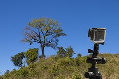 Action camera on tripod with tree and blue sky as background - landscape scene.  royalty free stock photography