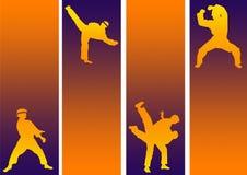 Action d'art martial Image libre de droits