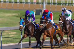 Action de chevaux de course Photos libres de droits