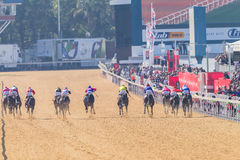 Action de course de chevaux Images stock