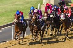 Action de course de chevaux Photo stock