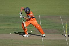 Action de cricket Images stock