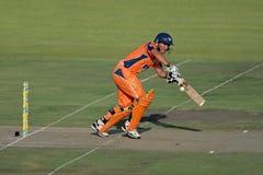 Action de cricket Images libres de droits