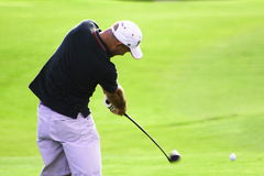 Action de golf Photo stock