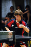 Action de ping-pong Photographie stock