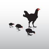Action de poulet Photographie stock libre de droits