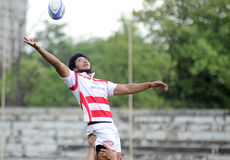 Action de rugby Photo stock