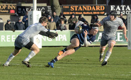 Action de rugby Photographie stock