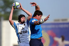 Action de rugby Image stock
