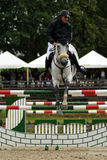 Action de Showjumping Photos stock