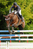 Action de Showjumping Images stock