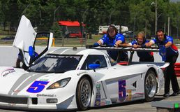 Action Express Racing Corvette Royalty Free Stock Photo