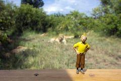 Action figure di Tintin alla parte anteriore di orgoglio dei leoni immagini stock libere da diritti