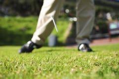 action golfer Στοκ εικόνες με δικαίωμα ελεύθερης χρήσης