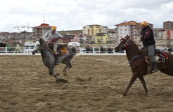 Action in a Jereed game. Jereed (Turkish: Cirit) is a traditional Turkish equestrian team sport played outdoors on horseback in which the objective is to score stock image
