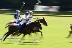 Action shot of a polo match. Speed action shot of a polo match in progress Stock Images