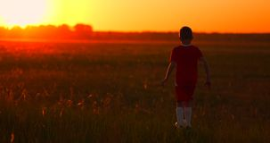 An action sport picture of a group of kid playing soccer football for exercise in before the sunset. An action sport picture of a group of kid playing soccer stock footage