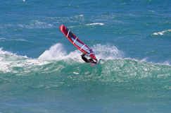 Action Sport Windsurfing Sailboarding. A windsurfer carves a wave while sailboarding at Diamond Head Beach in Hawaii Royalty Free Stock Image
