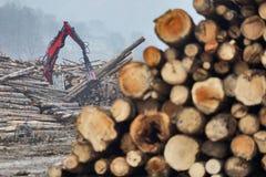 Actions en bois Images libres de droits