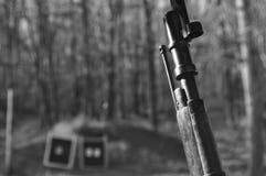 Actions en bois noires et blanches de fusil d'arme à feu de Mosin Nagant avec la baïonnette et cibles à l'arrière-plan photo stock