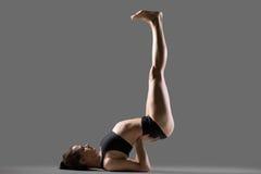 Actitud al revés de la yoga del sello Imagen de archivo libre de regalías