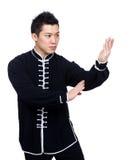 Actitud de la defensa en kung-fu chino Imágenes de archivo libres de regalías
