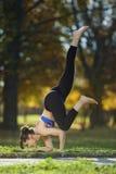 Actitud de la yoga de la paloma del vuelo imagen de archivo