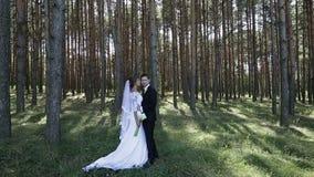 Actitud de novia y del novio en la madera almacen de video