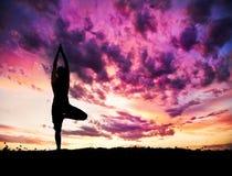 Actitud del árbol de la silueta de la yoga imagen de archivo