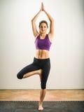 Actitud del árbol de la yoga Imagen de archivo libre de regalías