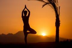 Actitud del árbol de la yoga en la ubicación tropical Foto de archivo