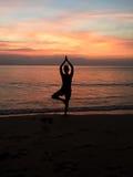 Actitud del árbol de la yoga en puesta del sol Foto de archivo libre de regalías