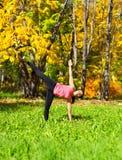 Actitud del chandrasana de Ardha de la yoga Fotografía de archivo