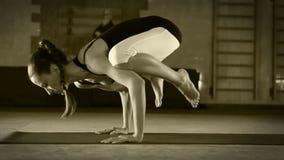 Actitud femenina flexible joven de la grúa de la yoga que hace almacen de video