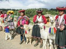 Actitud india de la mujer con un lama para los turistas en Cuzco fotos de archivo libres de regalías